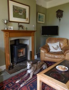Manor House Woodburning stove fitters